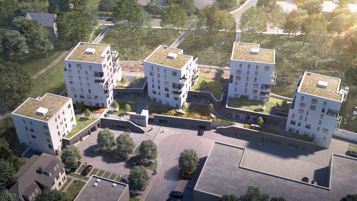 Westdeutsche Allgemeine Zeitung berichtet über das Projekt FRIEDO